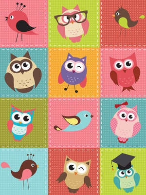 Birds and Owls Patchwork Fotobehang 10376VEA