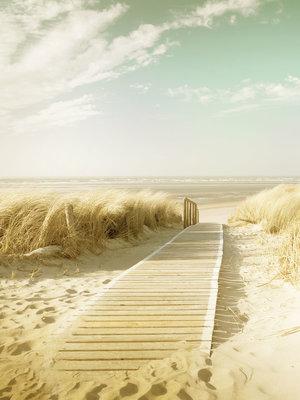 Beach Fotobehang 11600VEA
