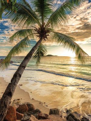 Beach Fotobehang 11732VEA