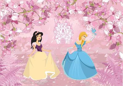 Prinsessen Fotobehang 12531P8