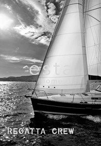 Esta Regatta Crew 156431 (Met Gratis Lijm)