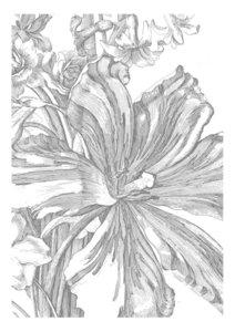 KEK Amsterdam Engraved Flowers II WP.328 (Met Gratis Lijm)