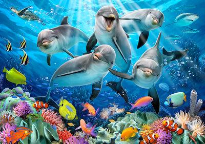 Dolfijnen Selfie Fotobehang 12849P8